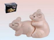 Salière-Poivrière petits Cochons